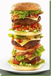 Hamburgers2101_468x708