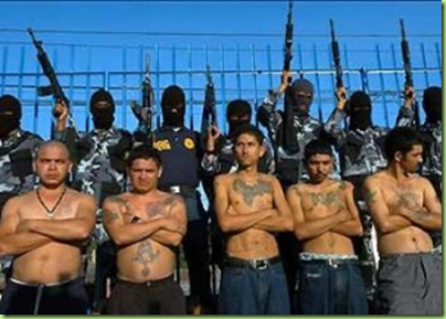 mexcican gangs
