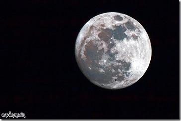 Mera casualudad un posible vencejo cruzando la Luna.
