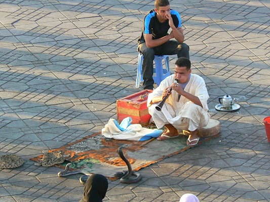 Obiective turistice Maroc: Jema el-Fnaa Marrakech - cantaretii de serpi