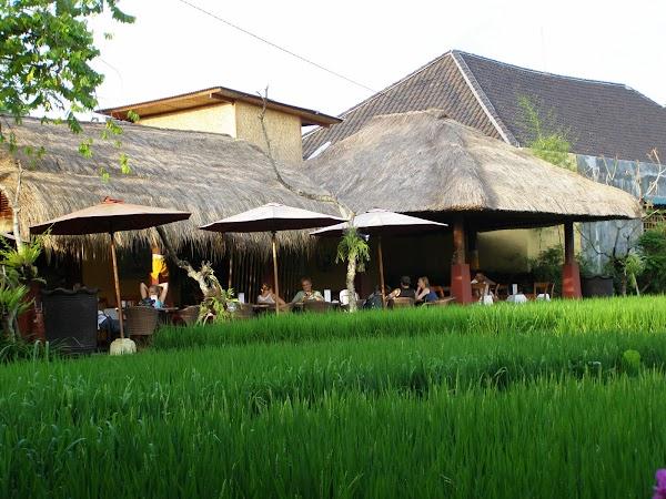 Obiective turistice Indonezia: Bali la o cafea
