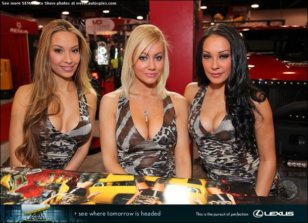 The Ladies Of SEMA04