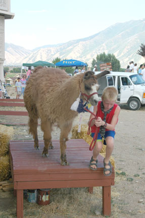Llama, Boy, & Ramp