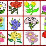 loto flores.jpg