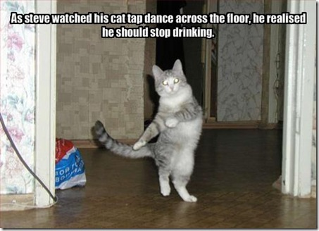 Funny Pictures: Tap dance by cat