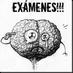 cerebro-en-examenes