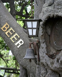 baobab-bar-curioso4
