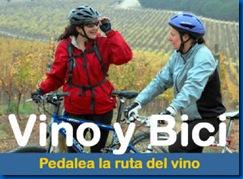 vino bici
