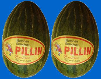 melones pillin
