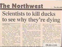 mata patos
