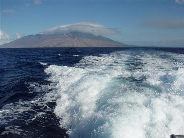 [Maui Snorkeling_10 (1) (Medium)[2].jpg]