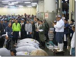 Tsukiji Fish Market_08 [1600x1200]