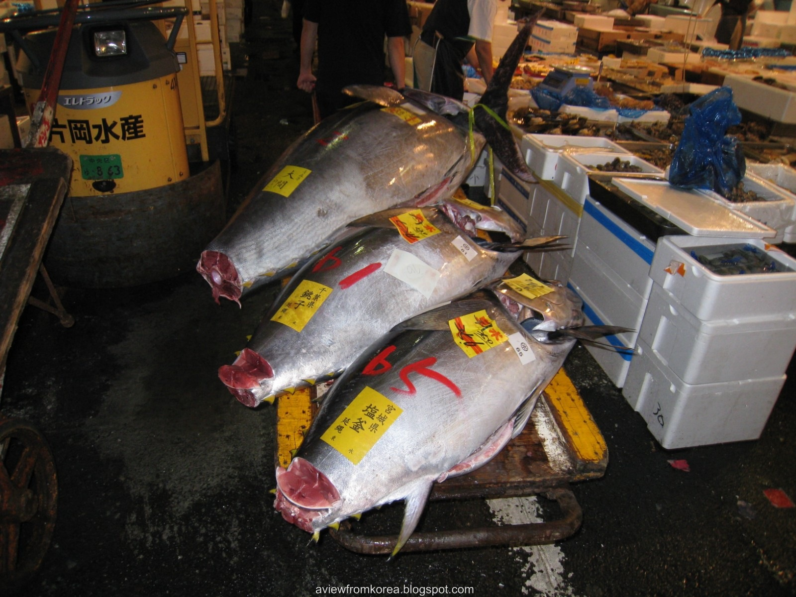 [Tsukiji Fish Market_03 [1600x1200][2].jpg]