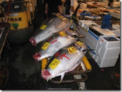Tsukiji Fish Market_03 [1600x1200]