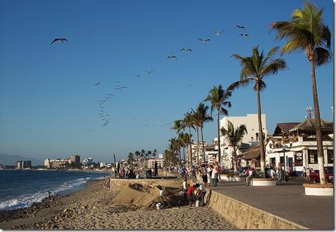 Actividades para hacer en puerto vallarta mexico playas bellas de mexico hoteles todo - Hoteles en puerto rico todo incluido ...