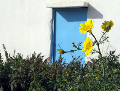 Blue and white building with a yellow flower in Carthage