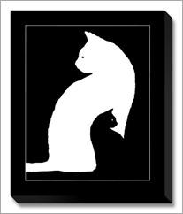 big-white-cat-small-black-cat