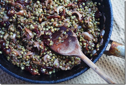 lentil-and-sour-cherry-salad-2