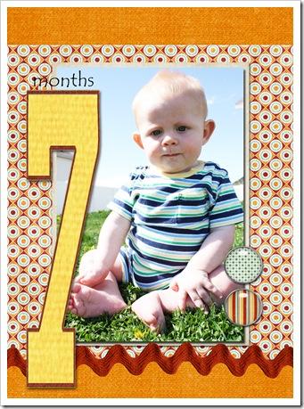 7 months copy