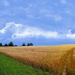 Beautyful Landscape (41).jpg