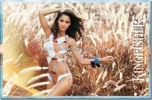 kingfisher_calendar_2011-a