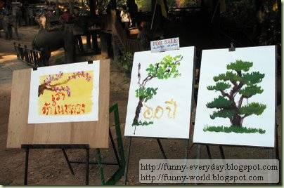 Elephants creativity paintings (6)