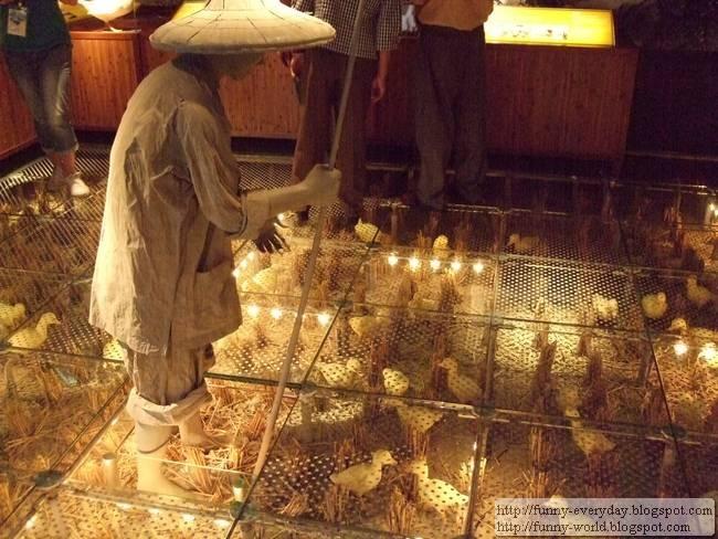 蘭陽博物館 (2)