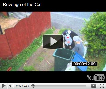Lady Putting Cat In Bin. quot;Cat Bin Ladyquot; of Britain,