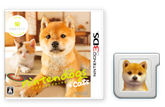 Nintendogs Plus Cats Comment Faire  Secondes