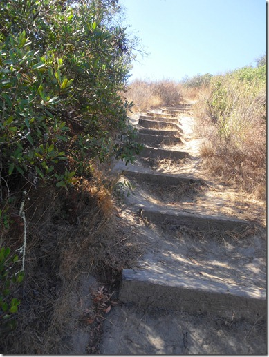 staircase on woodcreek