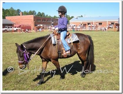 Horse Show Allie 2