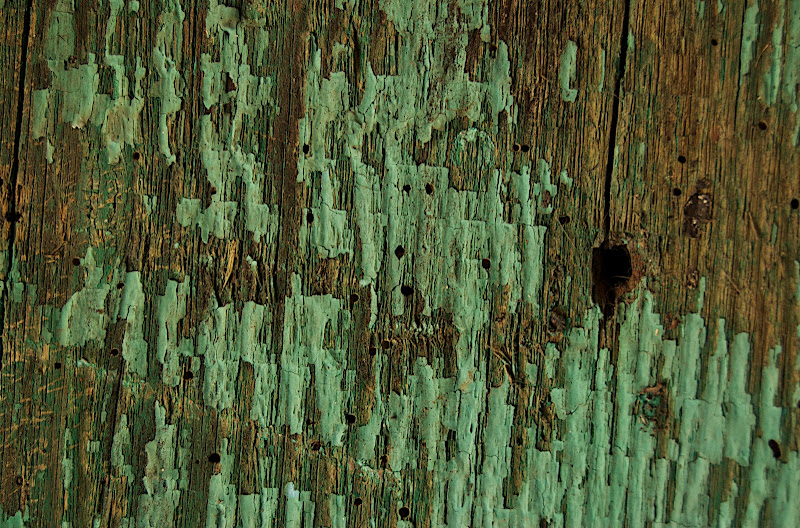 Old Fence #7