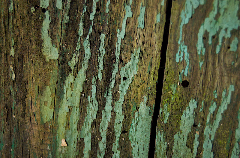 Old Fence #5