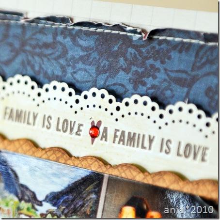 family_cu2
