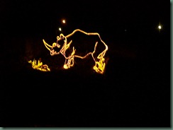 Lights at the Zoo (15)