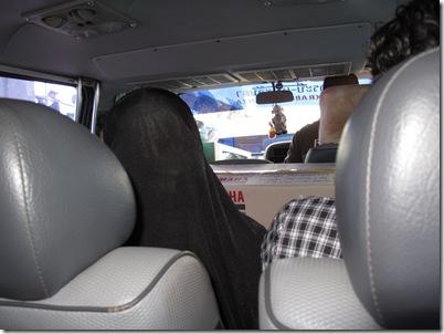 Minibus View