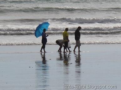 Wandering on the Beach