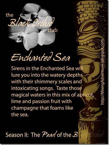 Week III Enchanted Sea Front