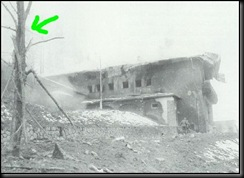 AdolfHitler-April301945-Germania 21