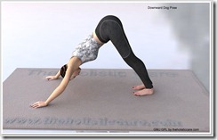 Downward-Dog-Yoga-Pose