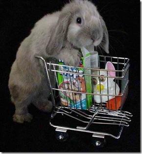 sedona-shopping