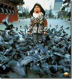 """""""...un'accozzaglia di bricioloni poltigliosi unti e bisunti a uso e consumo dei piccioni che svolazzano via terrorizzati dal mio improvviso piombar su di loro"""""""