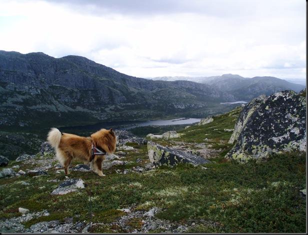Telemark 029