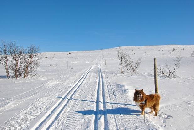 skitur! 001
