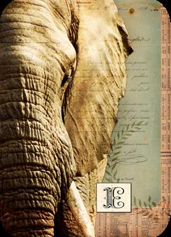 elephantATC