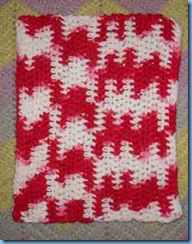 0509-Booty-Swap-Dish-Cloth