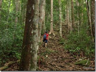 Santubong_Mountain_Kuching_Sarawak_28
