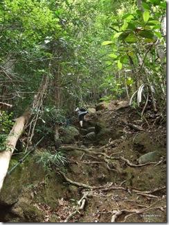 Santubong_Mountain_Kuching_Sarawak_05