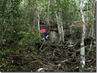 Santubong_Mountain_Kuching_Sarawak_17
