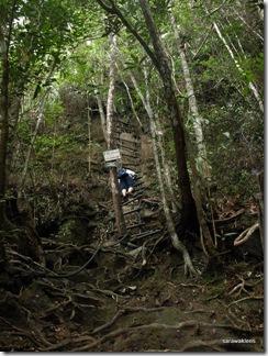 Santubong_Mountain_Kuching_Sarawak_30